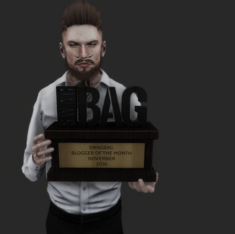 SwagBag Blogger of the Month November – ToxxicShadow